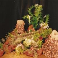 aquarium849